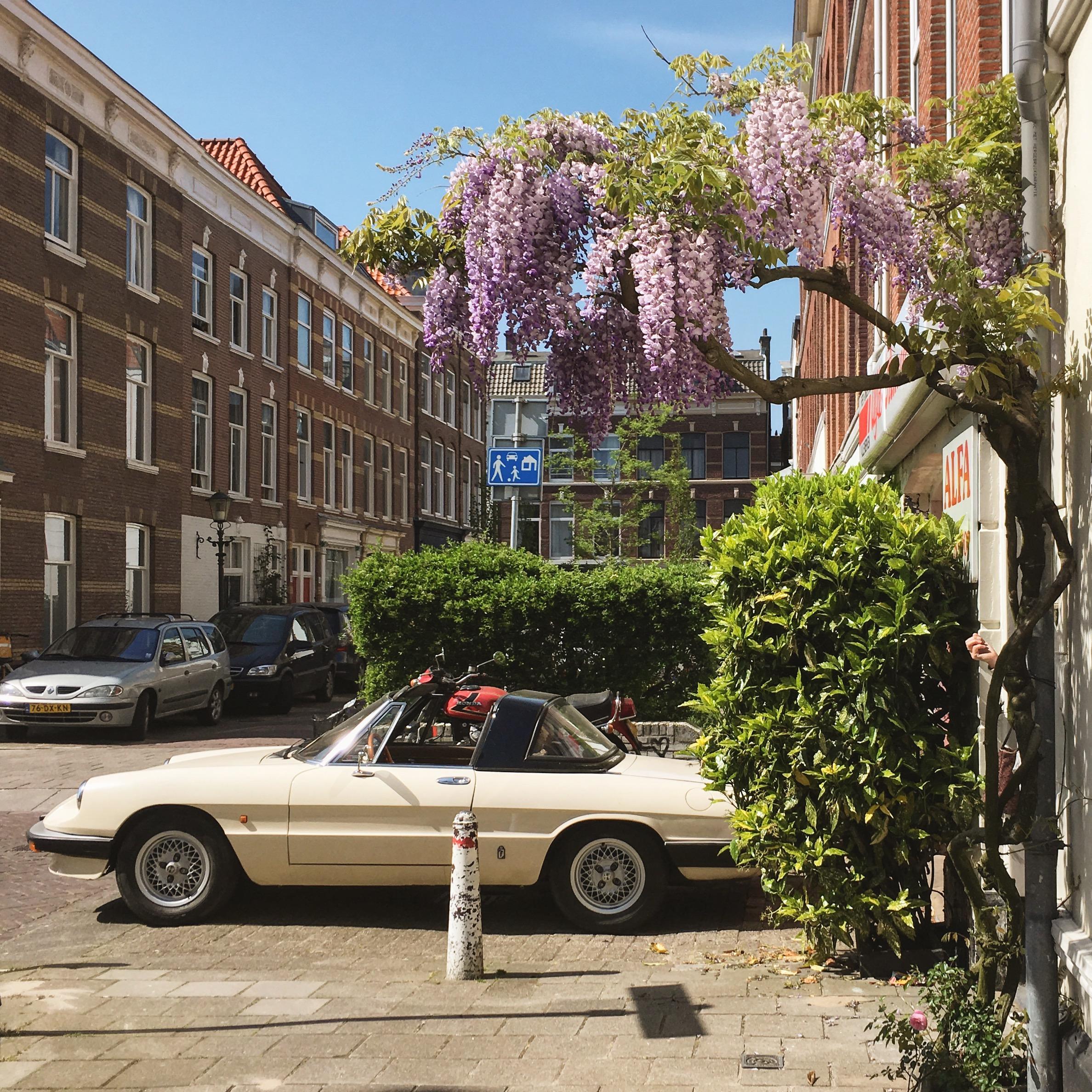 Ein paar Tage in Den Haag › klein0r.de